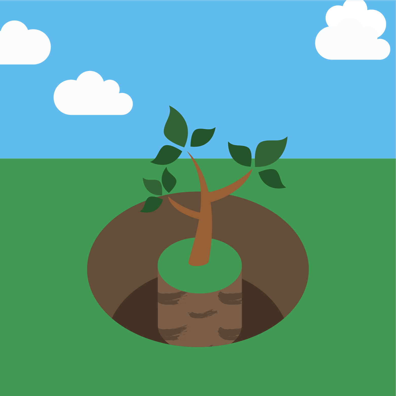 icon for planting a tree step 2