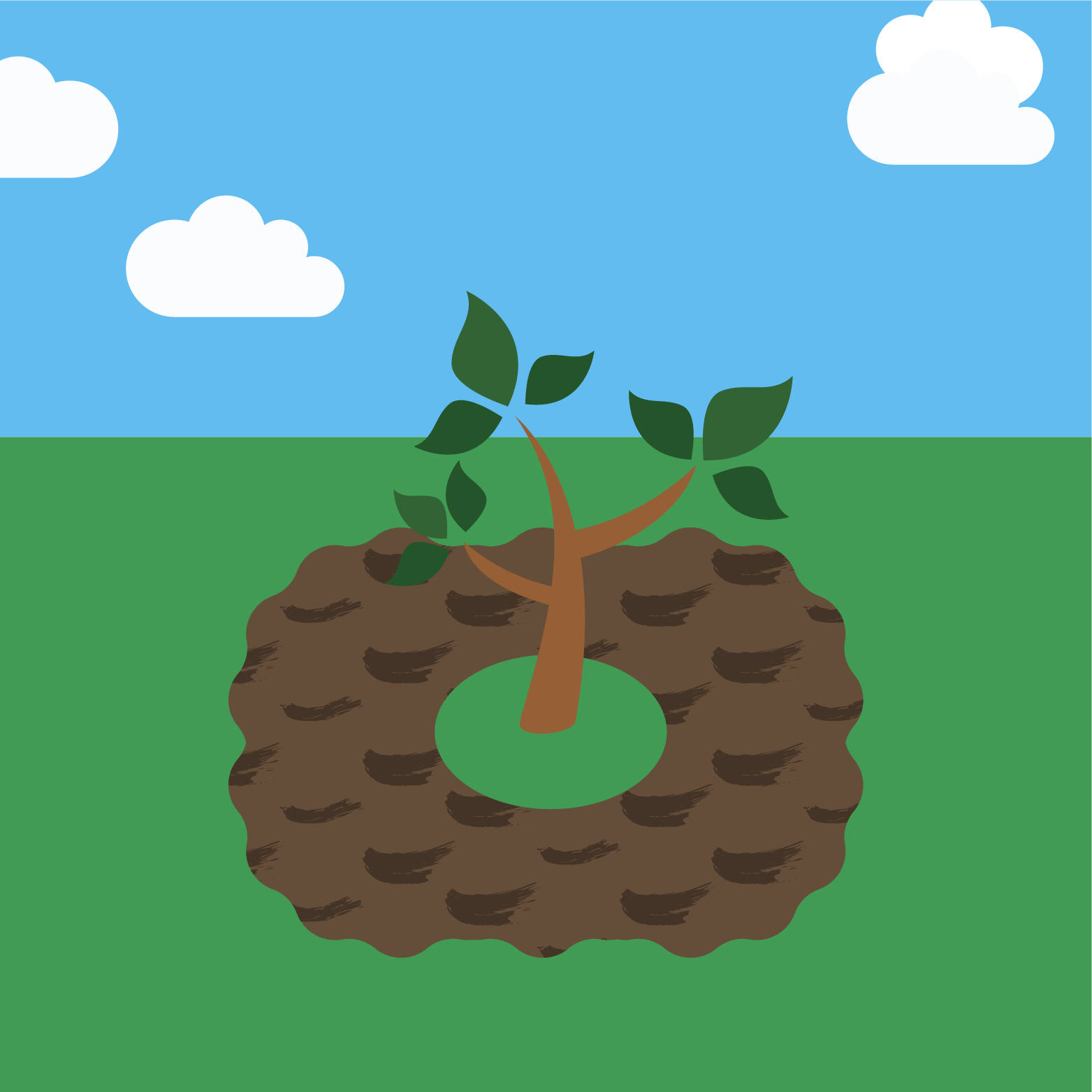 icon for planting a tree step 3