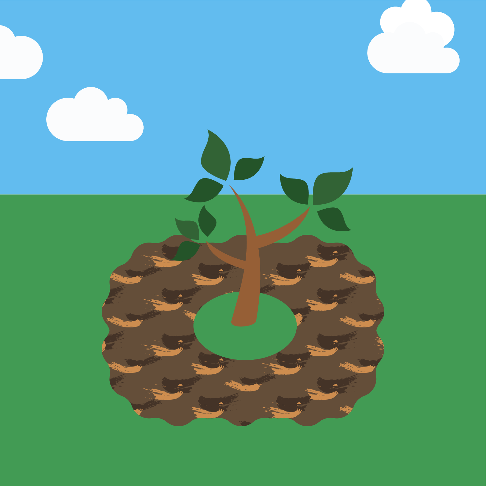 icon for planting a tree step 4