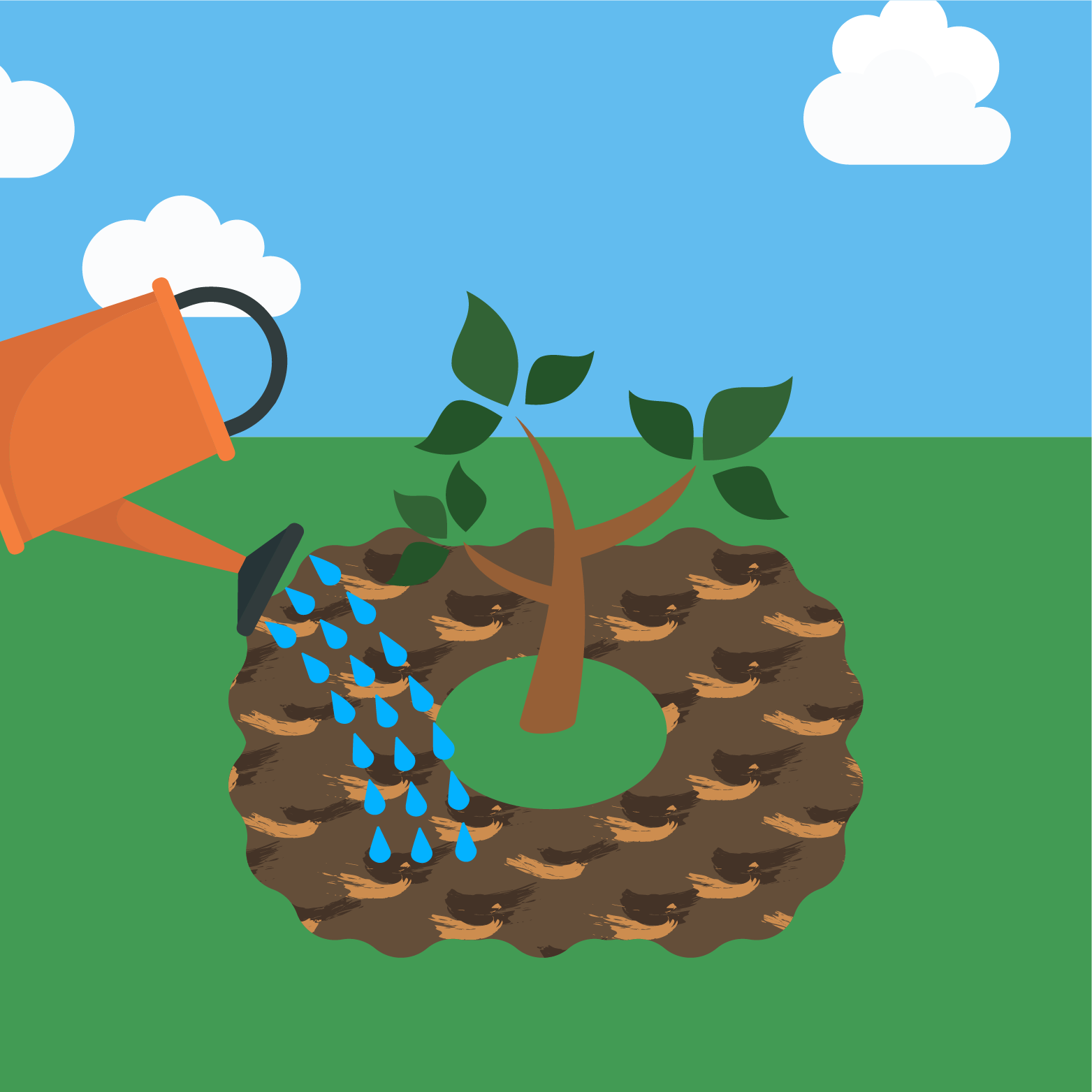 icon for planting a tree step 6